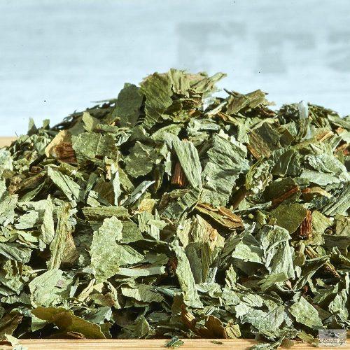 Bear's garlic (Ramsons)
